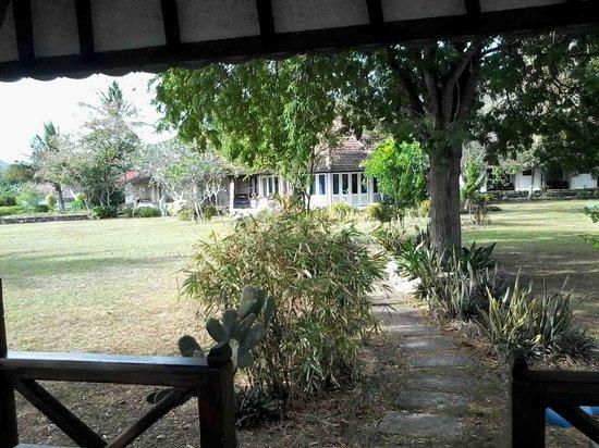 Bola Bola Paradise: garden