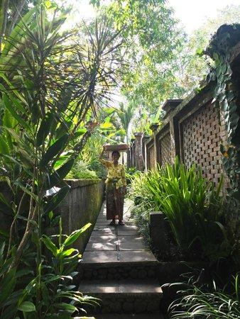 COMO Uma Ubud: Offerings