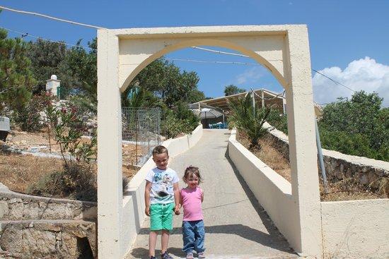 Thavma Coffee Drinks & Cretan food : Entrance from the car park