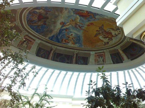 Iberostar Grand Hotel Paraiso: toit