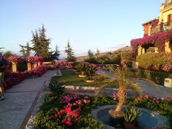 Villaggio l'Olivara : La terrazza belvedere... un paradiso!!!