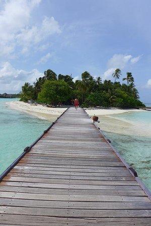 Medhufushi Island Resort: island view
