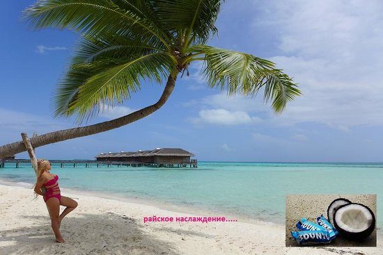 Medhufushi Island Resort: beach