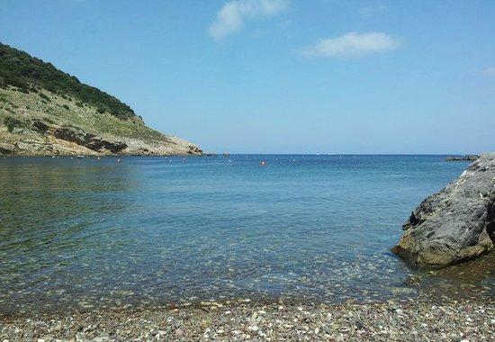 Appartamenti Economici Isola D Elba