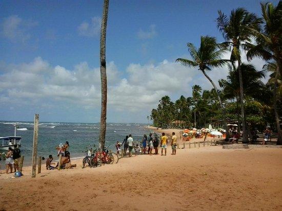 Forte Beach : Vista sul da praia do Forte