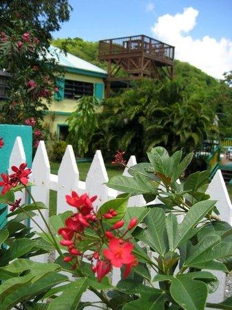 Starlit Escape Villa : Veiw of home from Gate