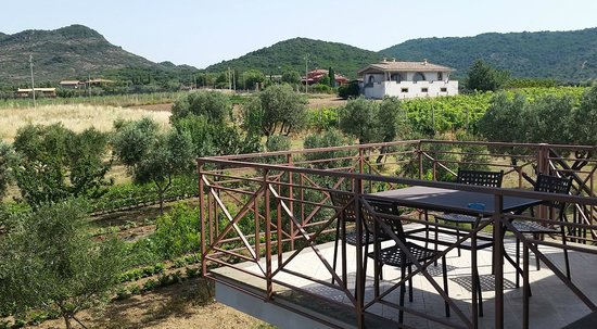 Agriturismo Casale di Gricciano : Surrounding hills from the upper balcony
