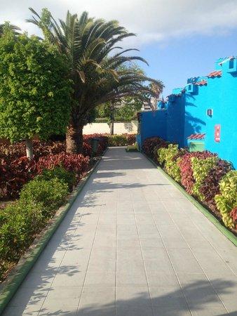 Tropical La Zona: Walkway from entrance to pool
