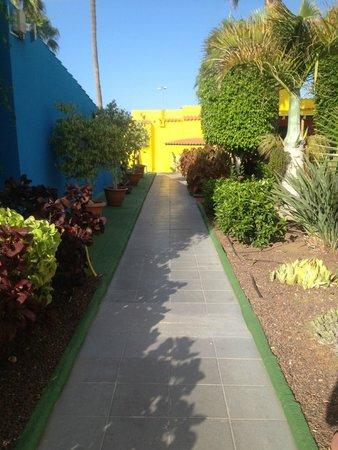 Tropical La Zona: Walkway