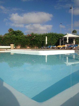 Tropical La Zona: Amazing Pool