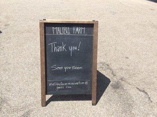 Malibu Farm: Arrivederci