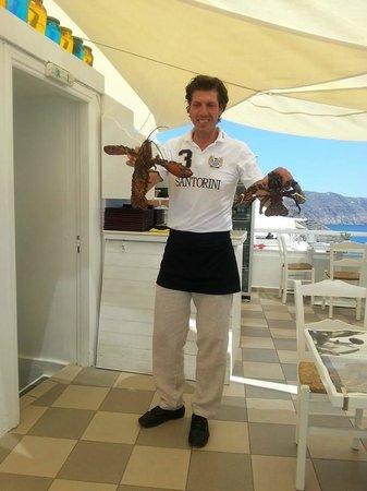 Pelekanos : Lobster is definitely on the menu
