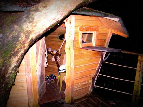 Les Cabanes du Bois Landry : cabane cocoon