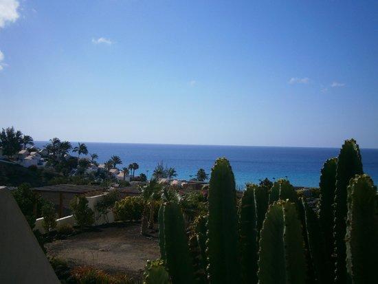 Iberostar Playa Gaviotas Park: vue sur la mer