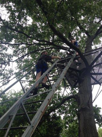 Big Bear Ziplines: J climbing to treehouse#1!