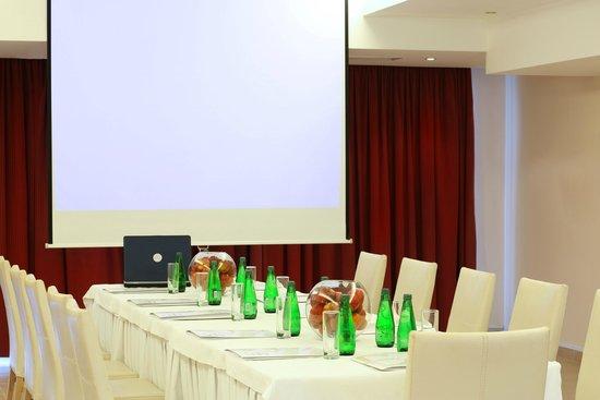 Ariti Grand Hotel: conference room