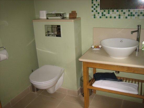 Slebech Park: Bathroom