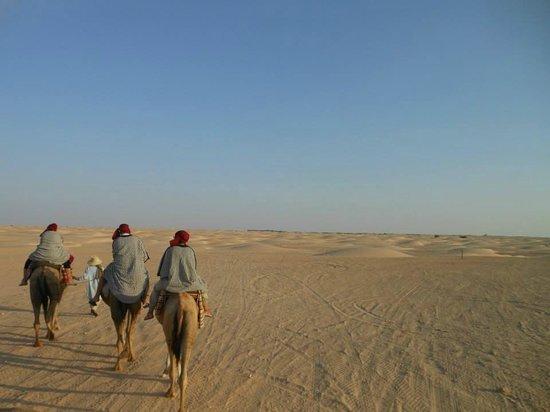Sahara Desert: deserto