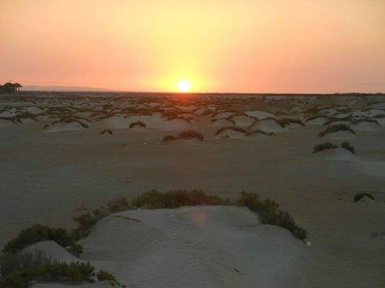 Sahara Desert: alba nel deserto