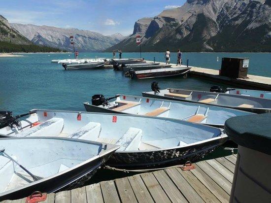 Lake Minnewanka Boat Tours Banff Alberta