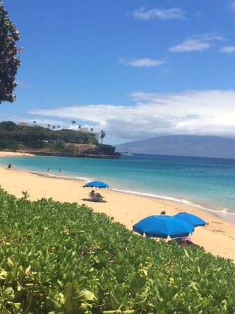 Royal Lahaina Resort : view from the pool overlooking the beach