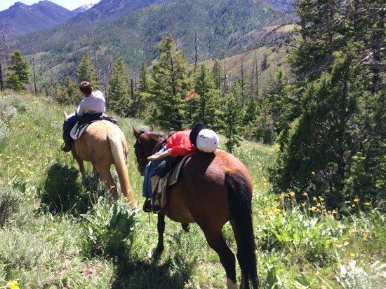 Crossed Sabres Ranch : fun!