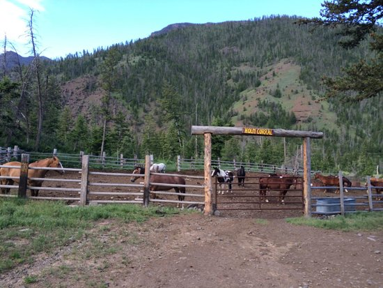 Crossed Sabres Ranch : Horse stables