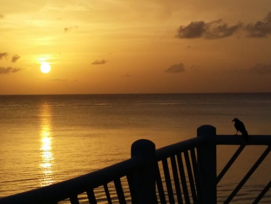Sunscape Sabor Cozumel: Can't beat the view!