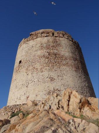 Coccodrillus Pizza-Restaurant: Uitkijk toren van Isobella Rossa