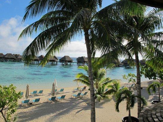 Hilton Moorea Lagoon Resort & Spa: Desayunando