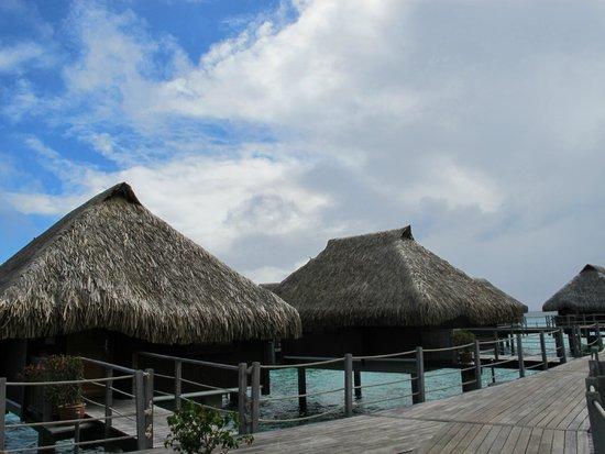 Hilton Moorea Lagoon Resort & Spa: hotel