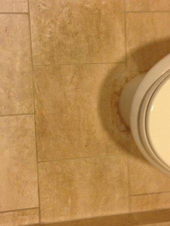 The Fairmont San Jose : Gross floor around the toilet
