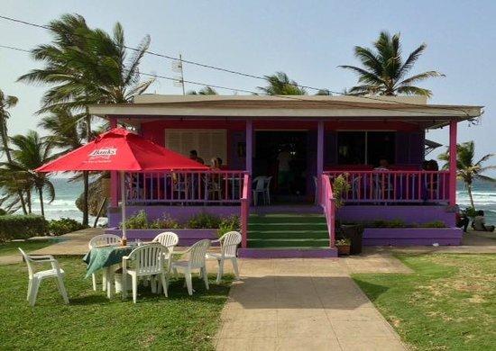Dina's Bar & Cafe: Dina's on Basheba