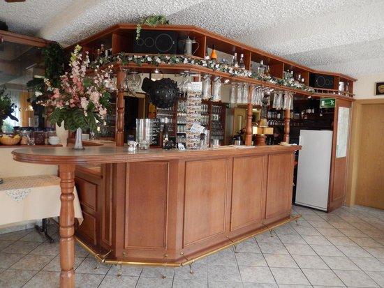 Bestensee, Alemania: Front Desk, Bar & Restaurant area