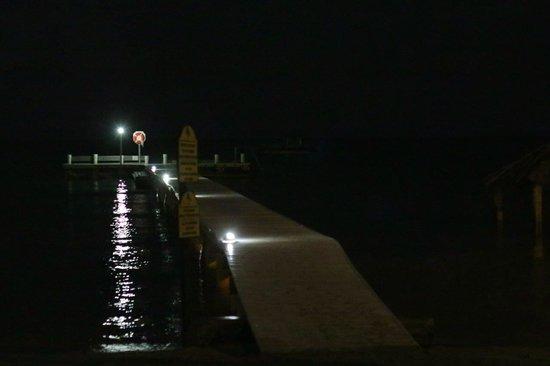 Copamarina Beach Resort & Spa: Dock at night