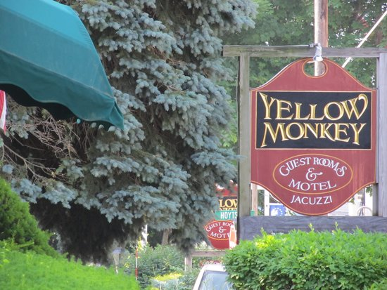 Yellow Monkey Guest Houses & Motel: Yellow Monkey
