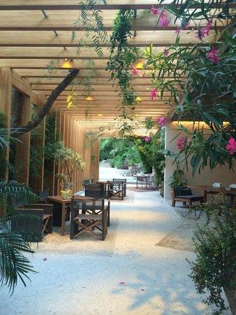 Macakizi Hotel Bodrum: Reception