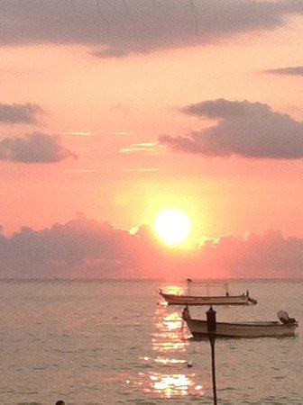 La Palapa: La Plapa Sunset