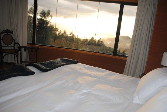 My SachaJi Wellness Hotel: View from Suite
