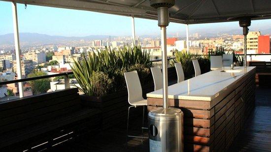 Filadelfia Suites Hotel Boutique: Roof Garden