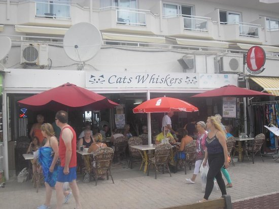 Cat's whiskers : Cafe from outside