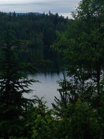 Nita Lake Lodge : View from porch