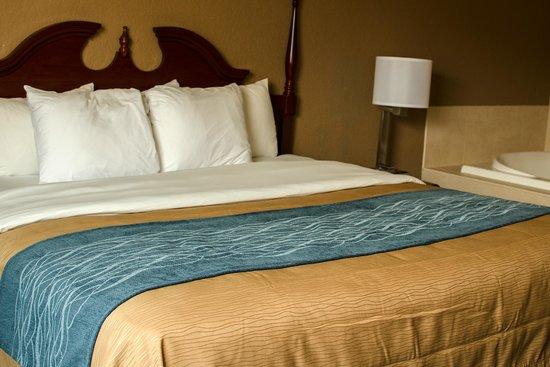 Comfort Inn Atlanta Downtown South: Suite
