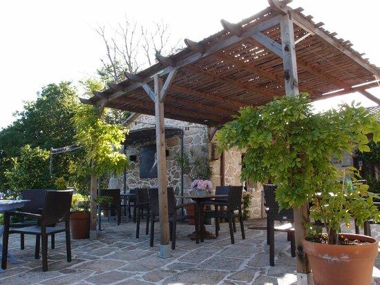 Hotel Quinta de San Amaro: Jardin