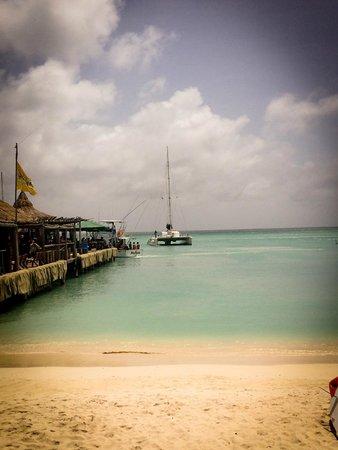 Palm Beach : Vista de la playa