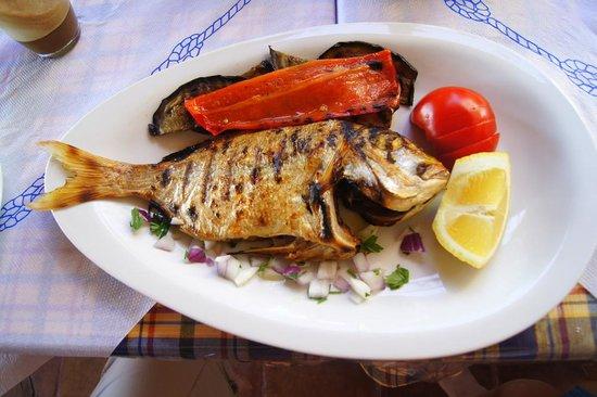 Taverna Kalomirakis Family : Grilled fish (2)