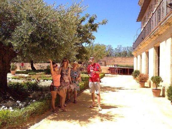 Alcázar de Jerez de la Frontera: Disfrutando de los jardines en un día de mucha calor!!!