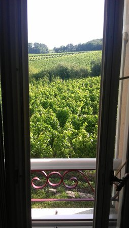 Chateau La Closerie De Fronsac: Room view of vineyard