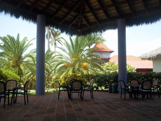 Caribe Club Princess Beach Resort & Spa: the buffee entree