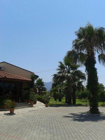 Hotel Grenadine Lodge: Reception
